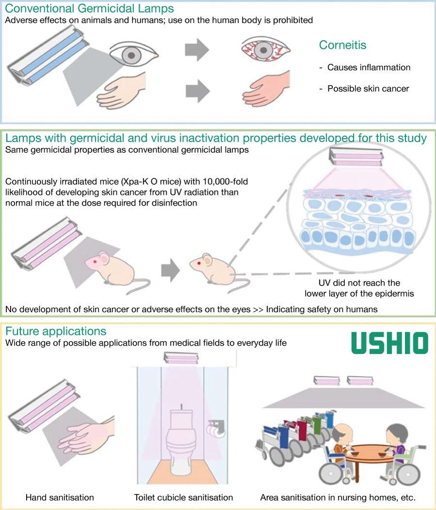 Kobe University-Ushio Inc. study has found 222 nm ultraviolet germicidal irradiation to be safe for repeated human exposure